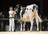Young Breeders 2015